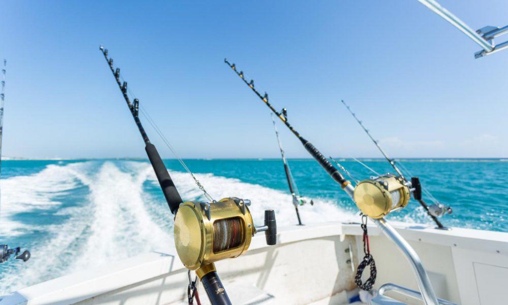 elegir-cana-de-pesca